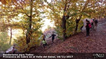 2017-11-18, ConoceNatura, Primavera de Cobre del Genal (097)
