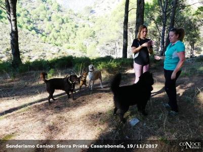 2017-11-19, ConoceNatura Canino, Sierra Prieta (039)