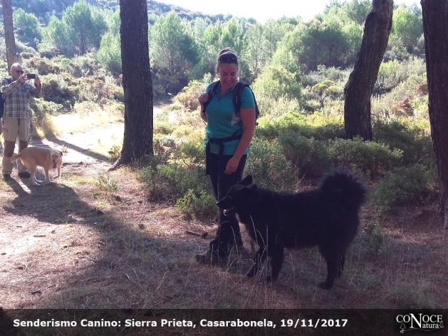 2017-11-19, ConoceNatura Canino, Sierra Prieta (046)