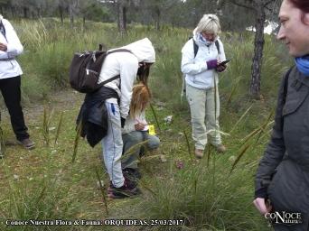 2017-03-25,. ConoceNatura, Flora & Fauna, Orquídeas (02)