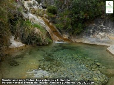 2019-05-04, CONOCENATURA Saltillo (30)